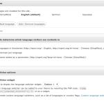 WPML Languages Setup
