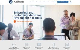 Besler Consulting Website Project